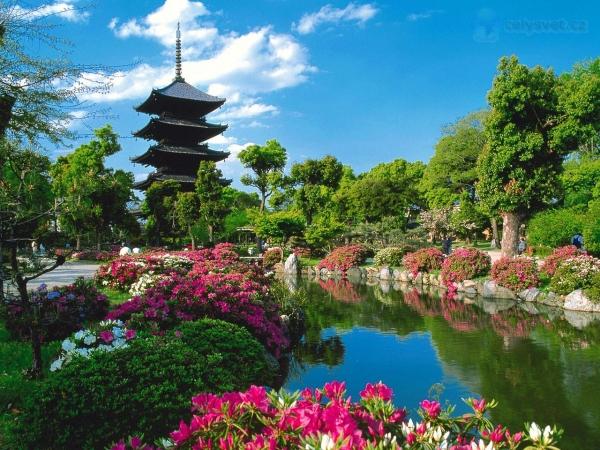 Easy Tokyo & Kyoto Asia